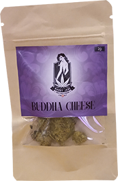 Buddha Cheese CBD Blüten von Marry Jane